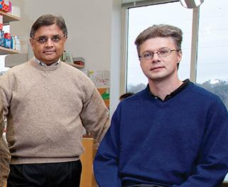Dr. Srivastava and Dr. Herzog